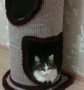 Дом для кошки, когтеточка, труба для когтей
