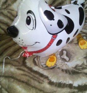 Прогулочная собачка фольгированные шары
