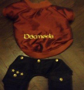 Тёплый костюм для маленькой собаки