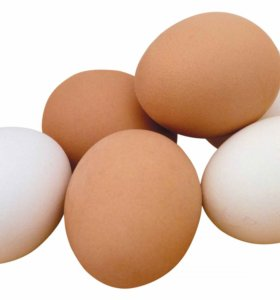Куриные домашние яйца