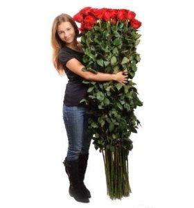 Гигантские розы