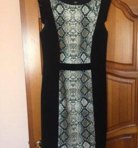 Платье Zolla новое!
