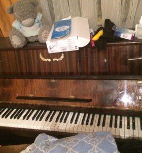 Пианино за шоколадку