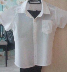 Рубашка на Утренник