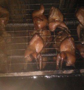 Перепела мясо