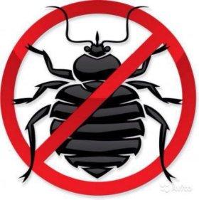 Уничтожение муравьев, тараканов, клопов, блох