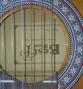 Гитара,чехол зимний