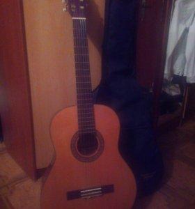 Классическая гитара 🎵