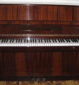 "Фортепиано ""Аккорд"""