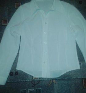 Белая класическая блуза