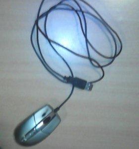 Мышка для компьютера.