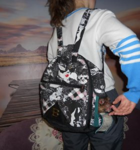 Рюкзак  - лежанка для переноса маленьких собачек.