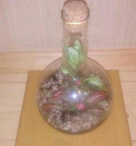 Флорариум! Живой цветок в бутылке!
