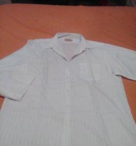 Рубашки большого размера