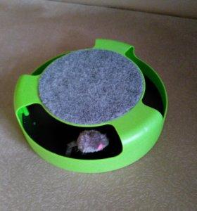 Когтеточка с бегающей мышкой