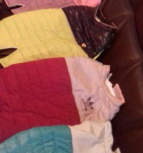 Новые брендовые куртки для собак.