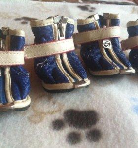Ботинки для собак 2 размер (большие)