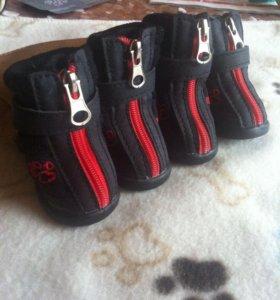 Ботинки для собак 1 размер (большие)