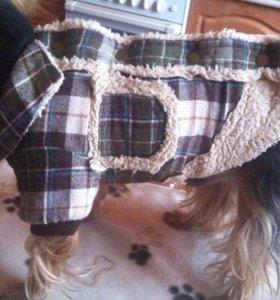 Тёплая жилетка для маленьких собак