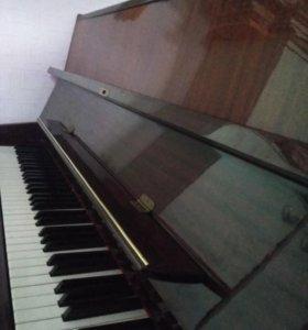 Пианино Fuchs and Mohr