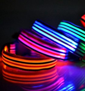 Светодиодные ошейники