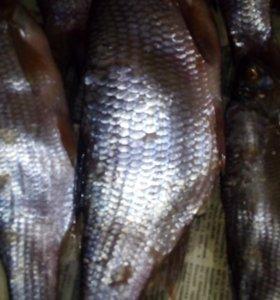 Рыба соленая язь