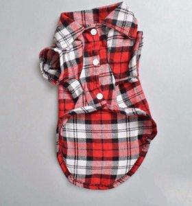 Одежда для собак. Рубашка в клеточку красная