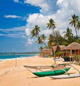 23 февраля на Шри-Ланке