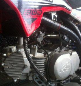 питбайк apollo elite S 150