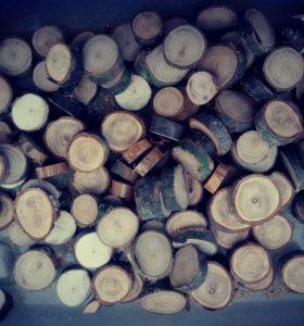 Спилы дерева, пеньки