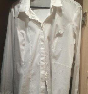 Блузка белая. Классическая