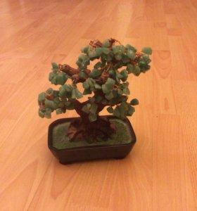 Нефритовое дерево счастья