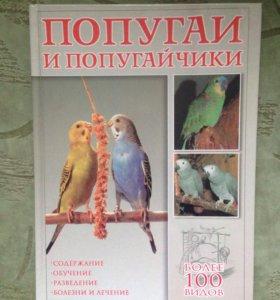 Попугаи и попугайчики