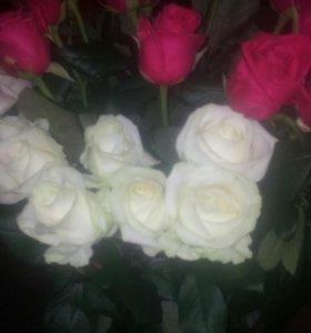 Свежие цветы и комнатные растения