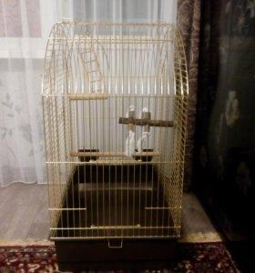 Клетка для птиц Ферпласт Greta золото