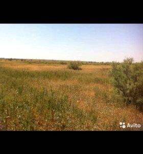 Продаеться земля сельхоз назначения (пастбище)
