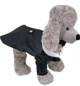 Одежда для собак Смокинг атласный
