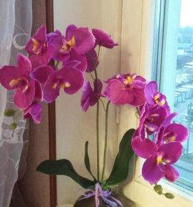 Композиция из 2-х веток орхидей