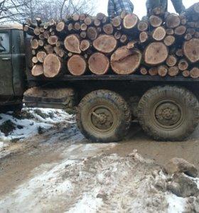 Драва дуб.