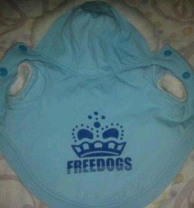 Куртка для мелких собак