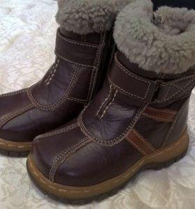 Сапоги зимние кожаные с натуральным мехом