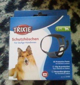 Трусиля для собаки