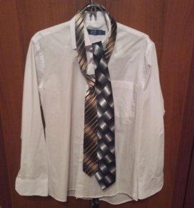Рубашка мужская+галстуки