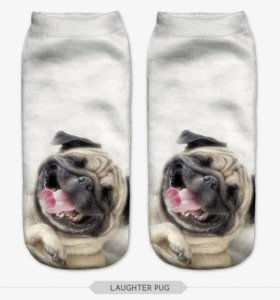 Носки для хозяина