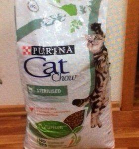 Корм для кошек!