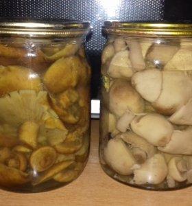 Консервированые домашние грибы .