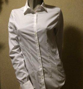 Новая рубашка Fracomina