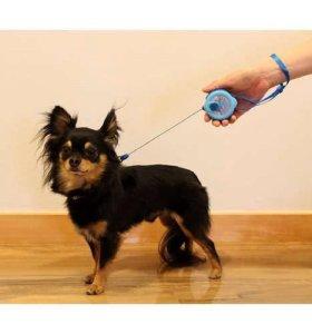 Рулетка-поводок для собак