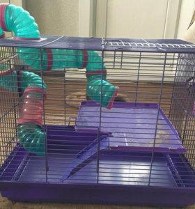 Клетку для грызунов