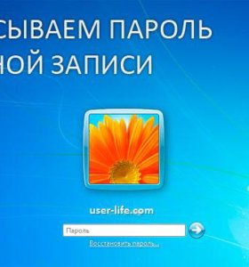 Сброс пароля на windows 7, 8, 8.1, 10.